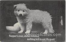 dog200217 - 1911 J G Steele Postcard Post Card