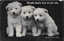 dog200221 - 1911 J G Steele Postcard Post Card