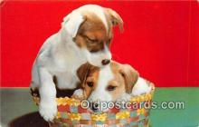 dog200225 - Postcard Post Card