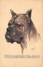 dog200236