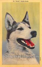 dog200248