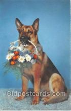 dog200276 - Postcard Post Card