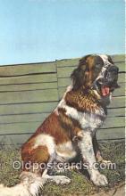 dog200277