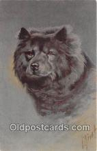 dog200284 - I Rivst  Postcard Post Card