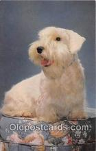 dog200286 - Sealyham Terrier Salmon Watercolour Postcard Post Card