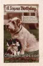 dog200362 - A Joyous Birthday  Postcard Post Card