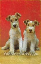 dog200374 - Wire Fox Terrier  Postcard Post Card