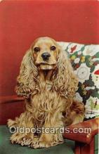 dog200378 - Cocker Spaniel  Postcard Post Card
