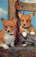 dog200399 - Pembrokeshire Corgis Salmon Watercolour Postcard Post Card
