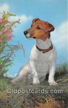 dog200427 - Jack Russel Terrier Salmon Watercolour Postcard Post Card