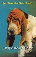 dog200438 - Ektachrome by Alan Felix Postcard Post Card