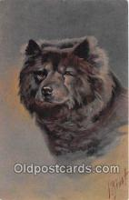 dog200441 - Chow Chow  Postcard Post Card