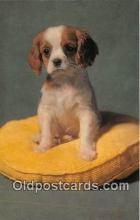 dog200445 - King Charles Spaniel Puppy Salmon Watercolour Postcard Post Card