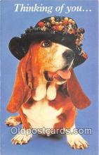 dog200449 - Thinking of You North Shore Animal League Postcard Post Card