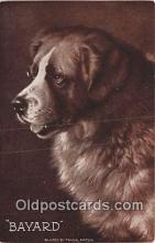 dog200451 - Bayard Painted by Frank Paton Postcard Post Card