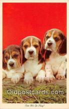 dog200467 - Postcard Post Card