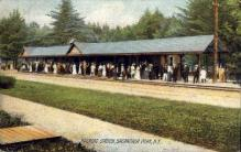 dep-NY125 - Railroad Station, Sacandaga Park, New York, NY, USA Railroad Train Depot Postcard Post Card
