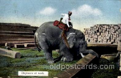ele001009 - Elephants at work, Elephant, Postcard Post Card