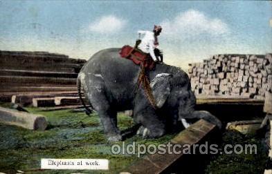 ele001009 - Elephants at work, Elephant, Postcard Post Card