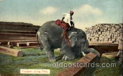 Ragoon,  India