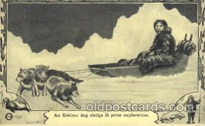 An Eskimo dogs sledge