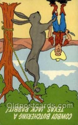 exa002065 - Texas Jack Rabbit Exaggeration Old Vintage Antique Postcard Post Card