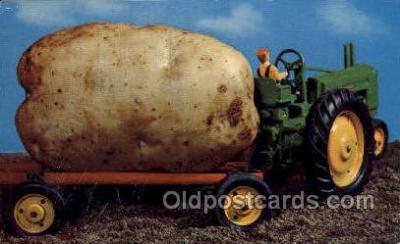 exa002083 - Idaho Potato Exaggeration Old Vintage Antique Postcard Post Card