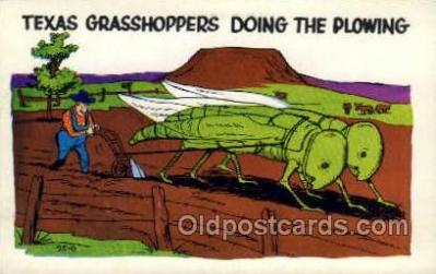 exa002120 - Texas Grasshoppers Exaggeration Old Vintage Antique Postcard Post Card