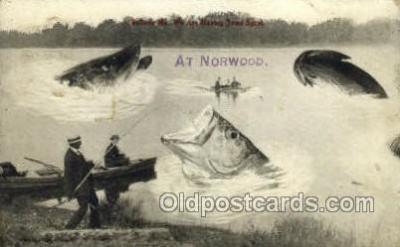 exa002135 - Norwood, Minn, USA Exaggeration Old Vintage Antique Postcard Post Card