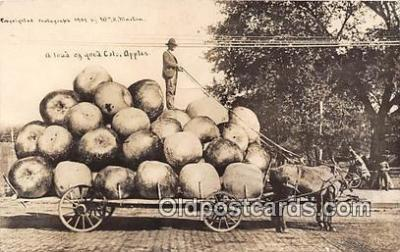 exa002287 - Apples 1909 WH Martin Postcards Post Cards Old Vintage Antique