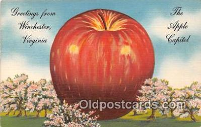 exa002339 - Apple Capitol Winchester, Virginia, USA Postcards Post Cards Old Vintage Antique
