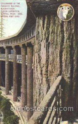 exp050247 - Forestry Building 1909 Alaska - Yukon Pacific Exposition Seattle Washington, USA Postcard Post Card