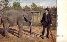 ele001007 - Lincoln Park, Chicago, Illinois USA, Elephant, Elephants, Postcard Post Card