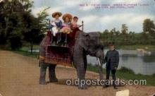 ele001026 - New York, Zoological Park, USA Elephant, Elephants, Postcard Post Card