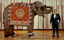 ele001027 - Bertha, presented by Jenda Smaha,  Elephant, Elephants, Postcard Post Card