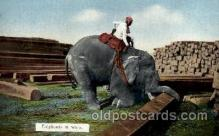 ele001046 - Rangoon India, Elephant, Elephants Post Card
