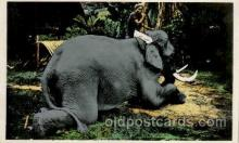 ele001077 - Tonkin Vietnam?  Elephant, Elephants, Postcard Post Card