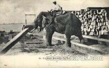 ele001090 - Elephant Stacking Timber, Elephants, Postcard Post Card