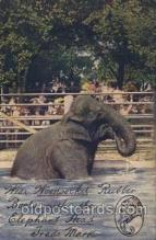 ele001105 - Wear Woonsocket Rubber Elephant Postcard Post Card