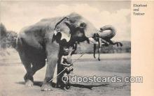 ele001110 - Elephant & Trainer  Postcards Post Cards Old Vintage Antique