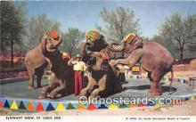 ele001116 - Elephant Show St Louis Zoo, USA Postcards Post Cards Old Vintage Antique