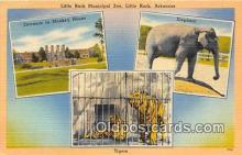 ele001117 - Little Rock Municipal Zoo Little Rock, Arkansas, USA Postcards Post Cards Old Vintage Antique