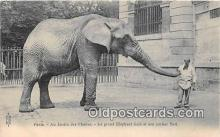 ele001119 - Paris, Au Jardin des Plantes  Postcards Post Cards Old Vintage Antique