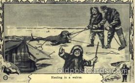 epr001032 - Walrus Exploration Postcard Post Card