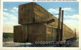 exa000038 - Exaggeration Postcard Post Card