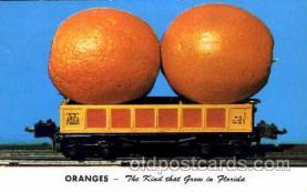 exa000121 - Oranges, Florida, Postcard Post Card