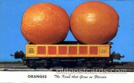 exa000126 - Oranges grown in Florida, Postcard Post Card