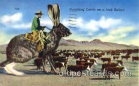 exa000157 - Exaggeration Postcard Post Card