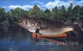 exa000166 - Exaggeration Postcard Post Card