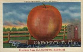 exa000202 - Clarksburg, Missouri, USA Exaggeration Old Vintage Antique Postcard Post Card
